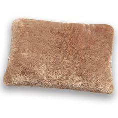 My Brookstone Nap Pillow.