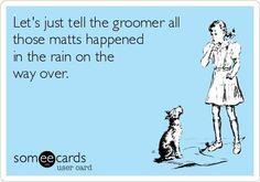 -Repinned- LOL. More groomer humor.