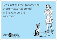 -Repinned- LOL. More groomer humor.