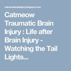 Catmeow Traumatic Brain Injury : Life after Brain Injury - Watching the Tail Lights...