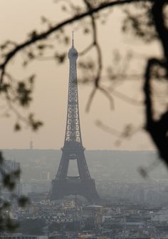 Stunning Snaps of the Eiffel Tower From Every Angle: Is there any landmark as widely photographed as the Eiffel Tower?