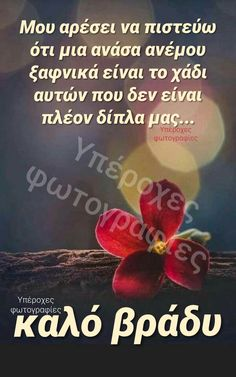 Good Night, Good Morning, Night Photos, Spirituality, Nighty Night, Buen Dia, Bonjour, Spiritual, Good Night Wishes