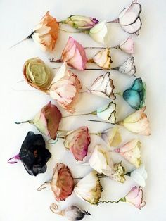 bohemian dried and dyed flowers