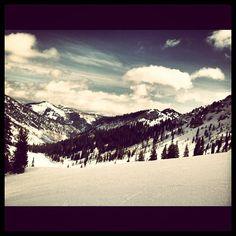 #snowbird #skiing all day
