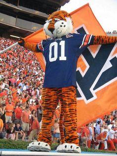War Eagle!  Tiger Nation!!!!
