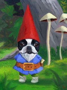 Hey, I found this really awesome Etsy listing at https://www.etsy.com/listing/62789724/gnome-boston-terrier-dog-art-print