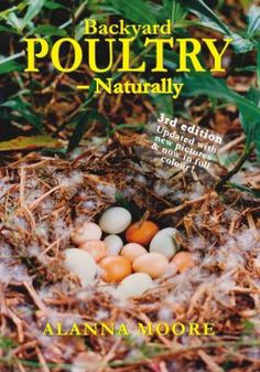 Cover image for Backyard poultry, naturally