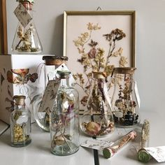 house flower decoration 87468417750994580 - Dried flowers captured in vintage glassware Source by jefrapp Aesthetic Room Decor, Witch Aesthetic, Flower Aesthetic, Aesthetic Vintage, Aesthetic Art, Aesthetic Pictures, My New Room, My Room, Deco Nature