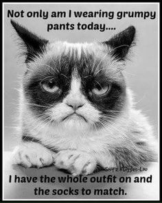 Not only am I wearing grumpy pants today ... I have the whole outfit on and the socks to match. .. ha ha ;)