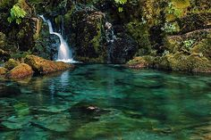 The Opal Creek Wilderness is a wilderness area located in the Willamette National Forest in the U.S. state of Oregon, on the border of the Mount Hood National Forest. It has the largest uncut watershed in Oregon.