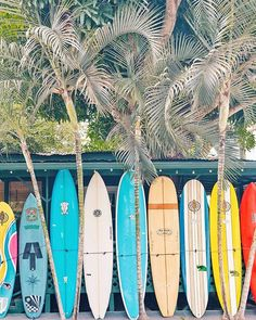 Surf Discover 8 Things You Absolutely Cannot Miss in Lisbon Portugal ckanani luxury travel & adventure Pretty little Haleiwa