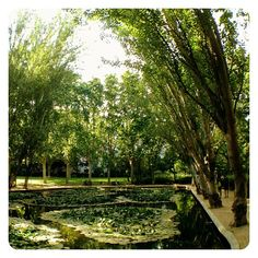 A lovely park located in Sant Gervasi, where locals go running, take out their dogs or just enjoy a lovely walk on a sunny afternoon.