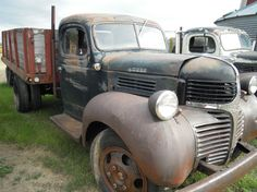 1947 dodge truck - Google Search