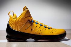 87cded39580629 Public School x Air Jordan Melo M11 Nike Shoes For Sale