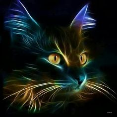 """Feline Fine Art """"The Cat's Whiskers"""" Warrior Cats, Crazy Cat Lady, Crazy Cats, Cat Embroidery, Image Chat, Gatos Cats, Cross Paintings, Cat Paintings, Cat Drawing"""