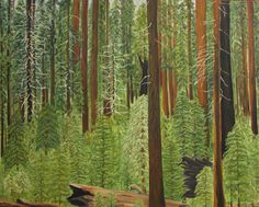 Redwood forest, Mariposa Grove; Yosemite--oil on canvas, by Leslie Swartz