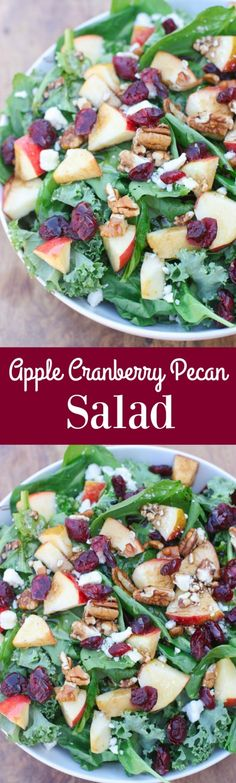 Apple Cranberry Pecan Salad with balsamic vinaigrette | Tastes Better From Scratch