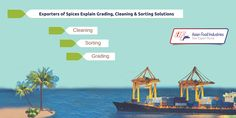 #Exporters #Of #Spices Explain Grading, Cleaning And Sorting Solutions