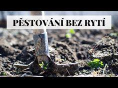 Pěstování bez rytí - tvorba úrodného záhonu - YouTube American Hazelnut, Insect Eggs, Compost Bags, Good Sources Of Protein, How To Remove Rust, Does It Work, Organic Fertilizer, Potting Soil, Companion Planting