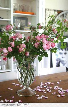 Robin Stubbert Самые красивые розы.... Обсуждение на L… na Stylowi.pl