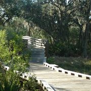 How to Build a Walkway With Wood Wood Walkway, Outdoor Walkway, Ecology, Garden Bridge, Paths, Walkways, Yard, Outdoor Structures, Urban