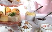 Afternoon Teas at The Tea Rooms | The Tea Rooms - Stoke Newington, London