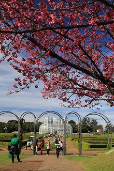 Jardim Botanico - Curitiba - Parana - Brasil