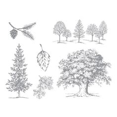 Lovely as a Tree Stamp Brush Set -- Digital Download