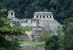 The Mayan Temple of the Inscriptions pyramid & Palace ruins emerge from the rainforest at Palenque