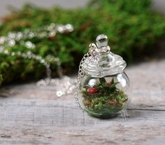 "Tiny Moss Mushroom and Fern Terrarium Necklace by The tiny glass jar contains real, preserved moss and lichen, as opposed to live specimens--and will stay green indefinitely. The jar is strung on an 18"" sterling silver chain. Charm everyone you meet with this tiny terrarium WoodlandBelle ="