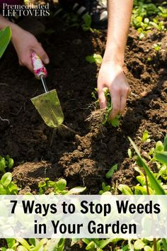 7 Ways to Stop Weeds in Your Garden- With these gardening tips you can reduce your time spent weeding, skip the harsh chemical treatments, and win the weed battle.