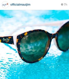 e30d61063f maui jim venus pools, the right way to face summer! Check out the collection