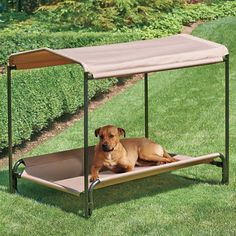 Heavy Duty Elevated Pet Bed & Shade: make my own out of PVC???