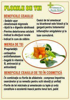 For Your Health, Aloe Vera, Health Tips, Health Fitness, Nutrition, Phonetic Alphabet, Healthy, Sport, Medicine