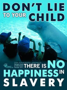 #CaptivityKills Don't let your kids think it is ok!