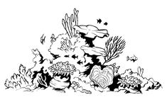 fish aquarium decorations coloring pages | 10 Best Coral reef drawing images in 2014 | Coral reef ...