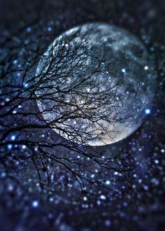 """scarlet-musings: """" poeticsir: """" Night """" Miss you… """""""