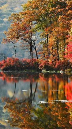 Autumn Landscape The post Autumn Landscape autumn scenery appeared first on Trendy. Fall Pictures, Nature Pictures, Fall Photos, Jardim Natural, Landscape Photography, Nature Photography, Photography Tattoos, Photography Backdrops, Travel Photography