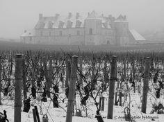 Montreur d'images : Le château du Clos de Vougeot. Bourgogne.