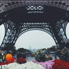 Bellainparis12∙°∘∗