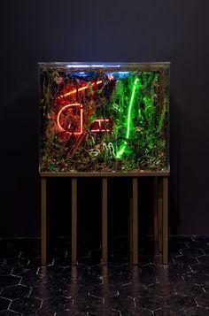 Max Hooper Schneider, The Death of Neon