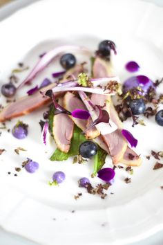 duck, picked onions & blueberries, cabbage puree