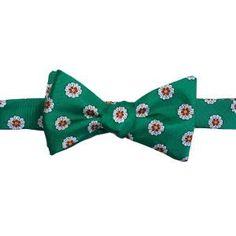 Reynolda Green. Green Floral Silk Bowtie Green Bow Tie, Green Flowers, Bows, Silk, Floral, Arches, Bowties, Flowers, Flower