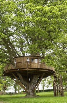 Circular Tree House elevated porch on the edge of a field - gardening for you