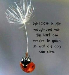 Inspirational Qoutes, Inspiring Quotes About Life, Motivational, Bible Verses Quotes, Wise Quotes, Scriptures, Afrikaanse Quotes, Morning Greetings Quotes, Religious Quotes