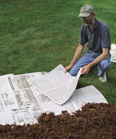 Preparing new flower  beds - smothering with newspaper.  This works great! shaberstroh