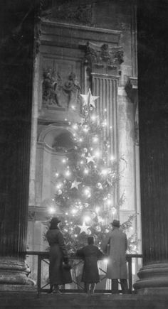 16th November 1938: A family looks at the sparkling lights on the Christmas tree at St. Paul's Cathedral, London.