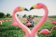 Friday Five // Fabulous Flamingo Wedding Theme Ideas