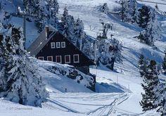 Le domaine de Chamrousse c'est 90 km de pistes. Adapté aux débutants avec des pistes accessibles, ce domaine plaira autant aux skieurs chevronnés. Découvrez ou redécouvrez le vertigineux couloir de Casserousse, superbe descente sur plus de 850 m de dénivelé.