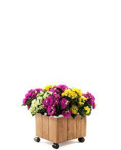 Donica drewniana skrzynka ogrodowa RDOK-1-30 na kółkach, cena: 72 zł